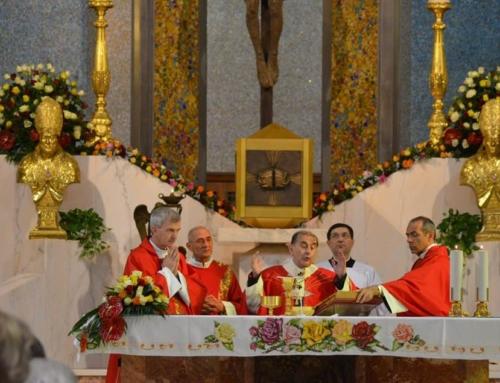 I ministeri nella Chiesa: il Diacono